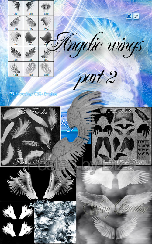 перья, крылья, кисти для фотошоп, hd