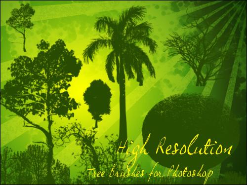 Кисти деревья для фотошоп с высоким разрешением