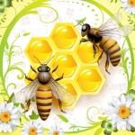 Пчелы, соты, мед, цветы. Векторная картинка.