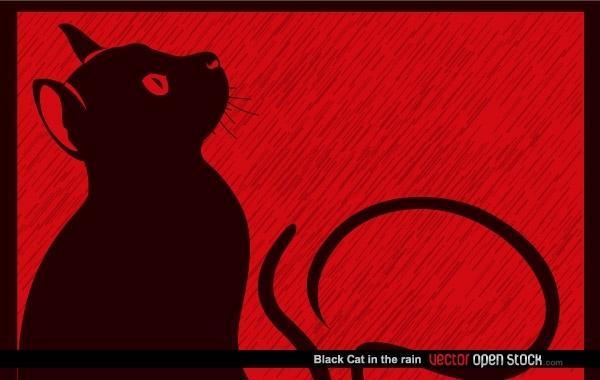 Черная кошка на красном фоне в векторе. Силуэт.