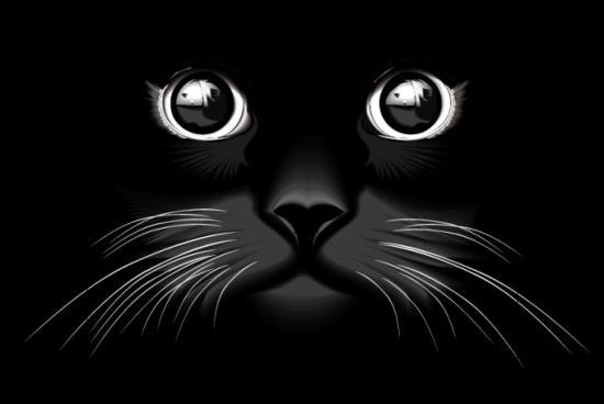 черная кошка, глаза кошки, морда кошки, векторная