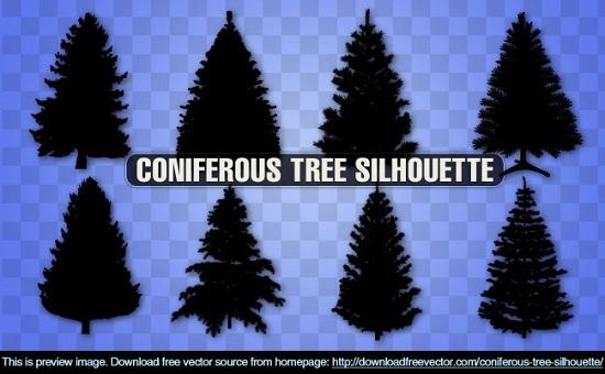 Силуэт елки, сосны в векторе.