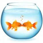 Вектор влюбленные рыбки, аквариум