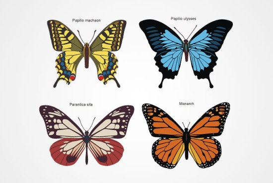 бабочки, лето, рисунок, в векторе, AI