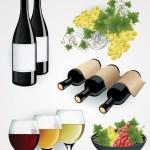 Вектор вино, бокалы, виноград на белом фоне