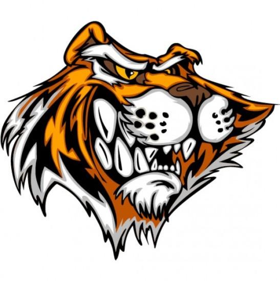 тигр, голова тигра, рисунок, рисунок в векторе, EPS