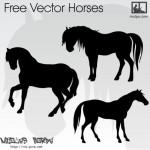 Силуэты лошадей, коней в векторе. Трафарет.