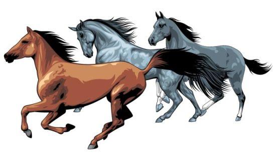рисунок, вектор, EPS формат, лошади, кони, грива, копыта, хвосты, бег, мультфильм, животные, на белом фоне