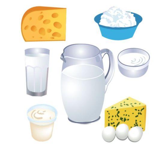 творог, сыр, молоко, яйца, сливки, стакан, кувшин, миска, молочные продукты, векторные рисунки, EPS