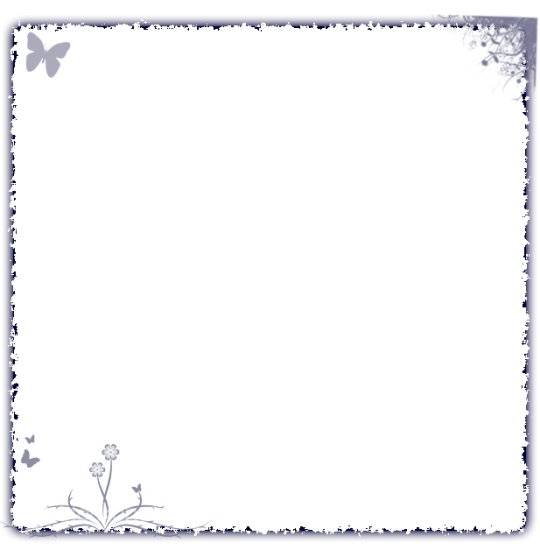 PSD исходник черно- белой рамки с бабочкой и цветами