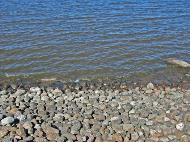 Финский залив. Вода и камни. Фото Картинка высокого разрешения