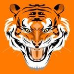 Оранжевая морда тигра в векторе