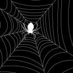 Паук и паутина в темноте. Хэллоуин. Картинка высокого разрешения