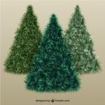 Пушистые елки в векторе.