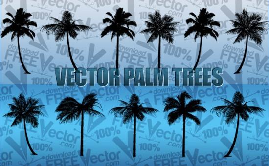 пальмы, деревья,  силуэт в векторе, формат AI , CSH , SVG , EPS