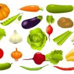 Векторный клипарт Овощи. Капуста, грибы, кукуруза.