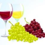 Бокалы красного и белого вина в векторе.